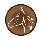 Vector cartoon horse head. — Stock Vector