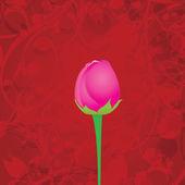Sfondo fiore rosa rossa vettoriale. — Vettoriale Stock