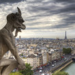 Gargoyle (chimera) on Notre Dame de Paris - Stock Photo