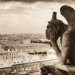 Gargoyle (chimera) on Notre Dame de Paris - Zdjcie stockowe