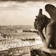Gargoyle (chimera) on Notre Dame de Paris — Stock Photo