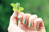 Green Manicure — Stock Photo