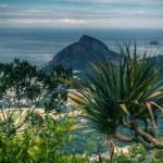 Rio de Janeiro — Stock Photo #23219280