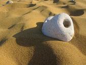 Pebble on the beach — Stock Photo