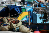 Fishing equipment — Stock Photo