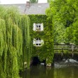 Pont-Tranchefetu (France) — Stock Photo