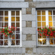 Gorron - Windows and flowers — Foto de Stock