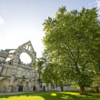 Stock Photo: Abbey of Longpont (Picardie)