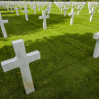 Stock Photo: Picardie (France) - AmericWar Cemetery