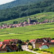 Itterswiller (Alsace) - Panorama — Stock Photo #14995191