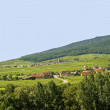 Itterswiller (Alsace) - Panorama — Stock Photo #14995237