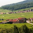 Royalty-Free Stock Photo: Itterswiller (Alsace) - Panorama