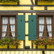 Ribeauville (Alsace) - House — Stock Photo #15563839