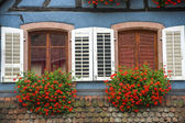 Ribeauville (Alsace) - House — Stock Photo