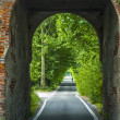 Road through arch in Italy - 图库照片