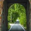 Road through arch in Italy - Stock fotografie