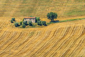Marches (Italy) - Landscape — Stock Photo