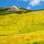 Landscape of Piano di Castelluccio — Stock Photo #21076707