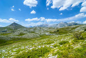 Landscape of Campo Imperatore — Stock Photo