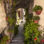 Spello (Umbria) — Stock Photo #22379399
