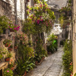 Spello (Umbria) — Stock Photo #22379415