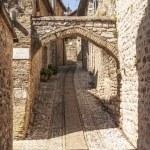 Spello (Umbria) — Stock Photo #22514843