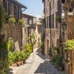 Spello (Umbria) — Stock Photo #22580649