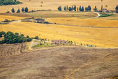 Landscape in Val d'Orcia (Tuscany) — Stock Photo