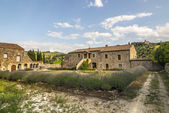 Sant'Antimo - Ancient house with lavender — Stock Photo