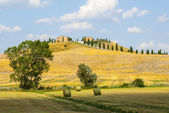 Crete senesi, characteristic landscape in Val d'Orcia — Stock Photo