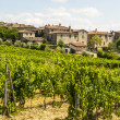 Villa a Sesta (Chianti) - The village and the vineyards — Stock Photo