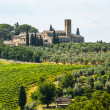 Stock Photo: Landscape near SGimignano (Tuscany)