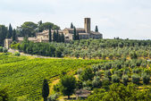 Landscape near San Gimignano (Tuscany) — Stock Photo