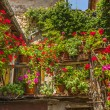 Villa a Sesta (Chianti) - House with plants and flowers — Stockfoto