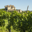 Royalty-Free Stock Photo: Castle of Torrechiara and vineyard