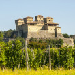 Castle of Torrechiara and vineyard — Stock Photo
