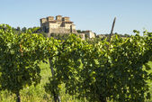 Castle of Torrechiara and vineyard — ストック写真