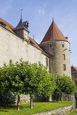 Castle of Yverdon (Switzerland) — Stock fotografie