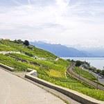 Lake of Geneva (Switzerland) — Stock Photo