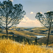 Val d'Orcia (Tuscany) — Stock Photo