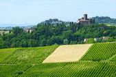 Monferrato (Italy) — Stock Photo