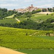Monferrato (Italy) — Stock Photo #30449273