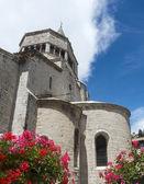Sisteron, citadelle e Cattedrale — Foto Stock