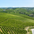Langhe, vineyards — Stock Photo #32006061