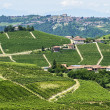 Langhe, vineyards — Stock Photo #32254399
