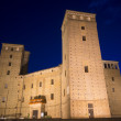 Castle of Fossano by night — Stock Photo #32402931