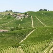 Langhe, vineyards — Stock Photo #32664429