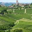Langhe, vineyards — Stock Photo #32670353