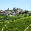 Langhe, vineyards — Stock Photo #32800587