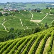 Langhe, vineyards — Stock Photo #32902933